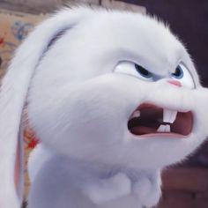 Cute Bunny Cartoon, Cute Cartoon Pictures, Cartoon Pics, Funny Bunnies, Cartoon Art, Cute Disney Wallpaper, Cute Cartoon Wallpapers, Animes Wallpapers, Baby Animals Super Cute