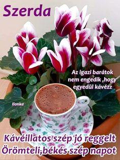 Good Morning, Pudding, Desserts, Food, Buen Dia, Tailgate Desserts, Deserts, Bonjour, Custard Pudding