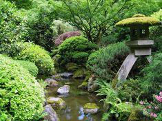 jardin japonais, bassin d'eau, rochers, pagode, arbustes et buis