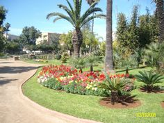 A Park in Mohammedia, Morocco