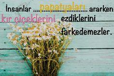 İnsanlar papatyaları ararken kır çiçeklerini ezdiklerini fark etmezler.  www.love.gen.tr #Aşk #Sevgi #Papatya