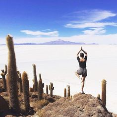 Stamp #360 - Bolivia: Relaxation views and cacti! Head to Fish Island in the Salar de Uyuní. You can take a tour from Uyuní to San Pedro de Atacama and see lagoons flamingos vulvanos and the worlds biggest salt flat. It's awesome! Thanks @kerstinitak for the awesome #stamp!  For more awesome travel tips and adventures download the Stamp Travel App Today. The link is in our bio!