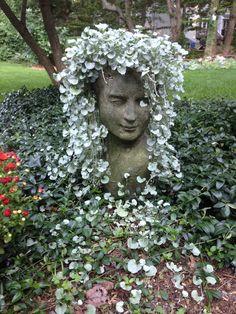 Silver Falls In Head Planter