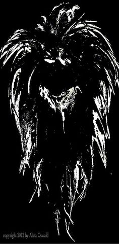 Feathered Angel Face: Black and White Photography  Dark Angels may be beautiful. But what if we take a closer look, behind their mask? What would we see then? Here's what I came up to, in an b image which is part of my End of Days photography series.