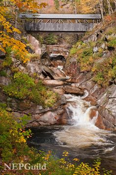Sentinel Pine Bridge over the Flume Gorge in Lincoln, New Hampshire│Mike Blanchette, New England Photography Guild