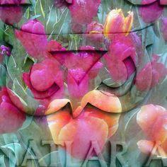 #mylife #vector #creativity #design #graphicart #graphicdesign #good #best #deviantart #tbt #tumblr  #insta_fenomen #shutterstock #123rf #fotolia #picsart #avantgarde #picalisso #istanbul #instaart #idgsa #msgsü #osmanhamdibeymüzesi