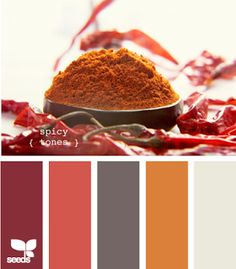 Spicy Color Palette