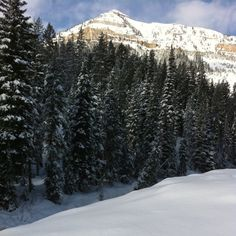 Can't wait for the snow season. If #dodgeridge had snow I'd be headignout right…