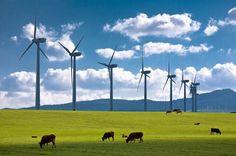 Ekim ayında yenilenebilir enerji payı ikiye katlandı