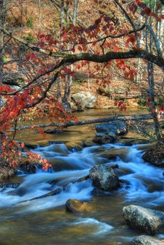 Rushing Water, Smoky Mountains near Telico, Tennessee | PicsVisit