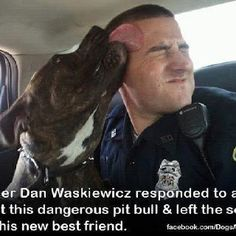 Stop discriminating against this breed!!