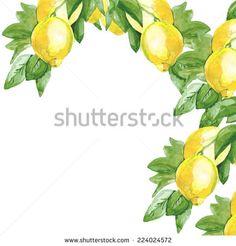 travel of lemons - Cerca con Google