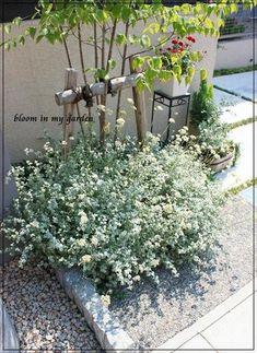 Path Design, Garden Design, House Design, Love Garden, Home And Garden, Green Flowers, Growing Vegetables, Flower Beds, Planting Flowers