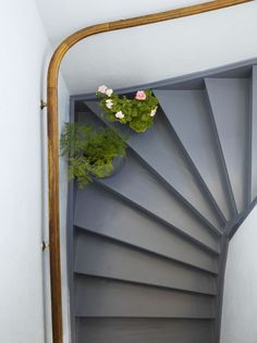 Explore The Best 24 Painted Stairs Ideas for Your New Home : 27 Painted Staircase Ideas Which Make Your Stairs Look New Tags: painted staircase, painted plywood stairs, painted stairs black, painted stairs ideas pictures New Staircase, Staircase Makeover, Staircase Design, Staircase Ideas, Staircase Painting, Black Staircase, Hallway Ideas, Basement Stairs, House Stairs