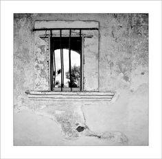 Mission Window by cdodkin, via Flickr