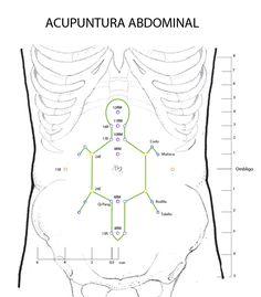 (Acupuntura_abdominal)