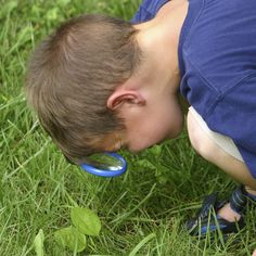 A bug hunt is also a good way of keeping Little Trekkers occupied when out walking on your favourite routes. Description from littletrekkers.co.uk. I searched for this on bing.com/images