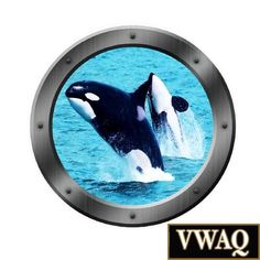 Killer whale porthole decal Camper RV motorhome mural graphic