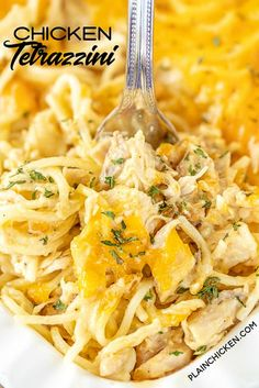 Cheesy Chicken Tetrazzini – comfort food at its best! Chicken and spaghetti baked in a homemade cheese sauce. So easy… Baked Cream Cheese Spaghetti, Cheesy Chicken Spaghetti, Baked Spaghetti, Spaghetti Recipes, Chicken Soup, Chicken Casserole, Pasta Recipes, Chicken Tetrazzini Recipes, Homemade Cheese Sauce