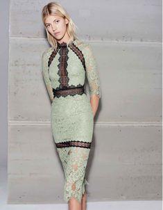 Alexis Marisa Sage Lace Midi Dress | SWANK