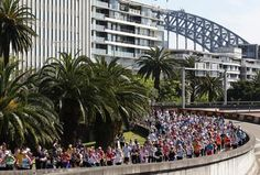 Join in the Blackmore's Running Festival & raise money for your favourite charity! Sydney Harbour Bridge, How To Raise Money, Charity, Join, Racing, Australia, Sports, Travel, Running
