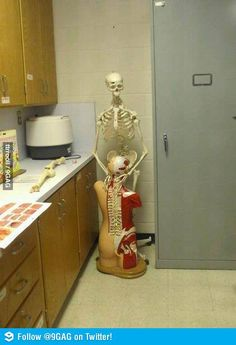 See, rate and share the best detention memes, gifs and funny pics. Memedroid: your daily dose of fun! Medical Humor, Nurse Humor, Funny Medical, Medical School, Hospital Humor, Lol, Work Humor, Funny Photos, Awkward Pictures