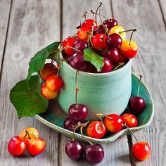 Very Nice Delicious Cherry Fruit Cherry Fruit, Fruit And Veg, Fruits And Vegetables, Fresh Fruit, Teal Cups, Fruits Photos, Fruit Photography, Beautiful Fruits, Juicy Fruit