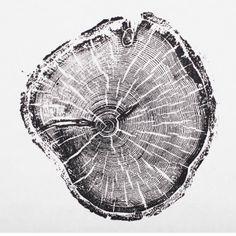 Old Growth Pine print