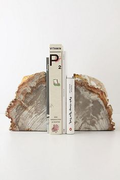 Accent on the bookshelves on the window wall -  Petrified Wood Bookends from Anthropologie