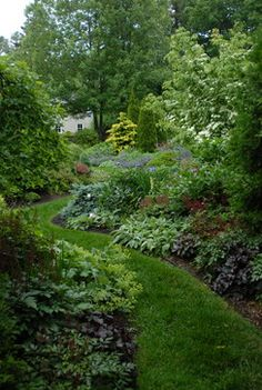 This is what I want to do in my backyard. A well planted wandering path. Cuts down on mowing and is absolutely beautiful. I want privacy with plants!