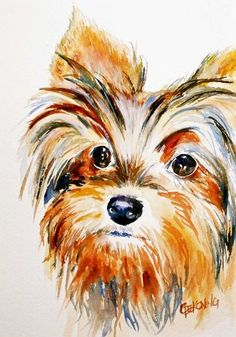 Yorkie watercolor