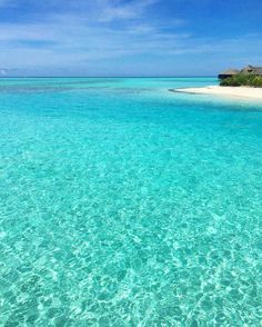 The Maldives Island