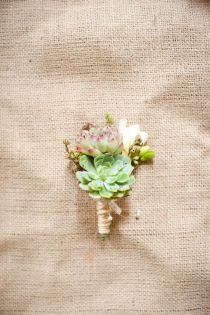 echeveria, freesia, waxflower, twine