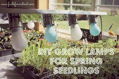 DIY Grow Lamps for Spring Seedlings