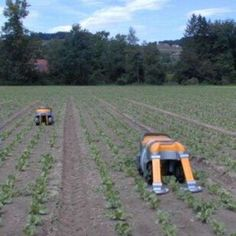 'Weedmaster' from Fabian Zimmerli Makes Picking Pesky Plants Easier #robots #technology trendhunter.com