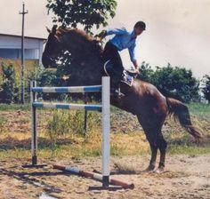 Rodrigo Pessoa jumping backwards. Why? Because he CAN.