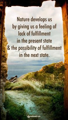 Fulfillment Quotes, Enlightenment Quotes, Kabbalah Quotes, Religious Tolerance, Levels Of Consciousness, Spiritual Wisdom, Wisdom Quotes, Qoutes, Writing A Book