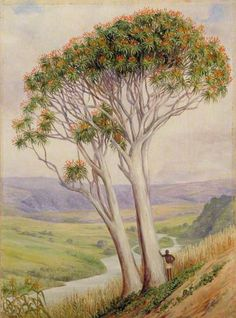 A Remnant of the Past near Verulam, Natal by Marianne North; c. 1882; Oil on board; Collection: Royal Botanic Gardens, Kew, England