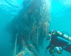 NOAA divers confront a bus-sized mass of fishing nets that was reported last September at the remote Pearl and Hermes Atoll in the North Pacific. All fishing nets found during the mission will be used as fuel to produce electricity in Hawaii, part of the state's Nets to Energy program, to which NOAA has donated wayward fishing gear since 2002. Every 100 tons of nets recovered can generate enough electricity to power 43 homes for a year.