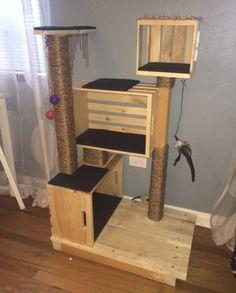 DIY cat condo!!!! Wh
