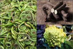 Take a tour of some obscure veggies, from homely roots to a mind-bending, sculptural-looking brassica.