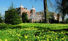 Hatfield House (okay, okay, it's a bit far fetched but why not dream big?)