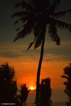 Sunset at Kumarakom, Kerala, India