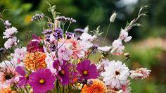 värikäs kukkakimppu - Google-haku