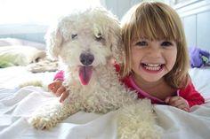 Jo, en hund gör barn lyckligare på riktigt Ny forskning visar att det kan vara dags att ge efter för valptjatet