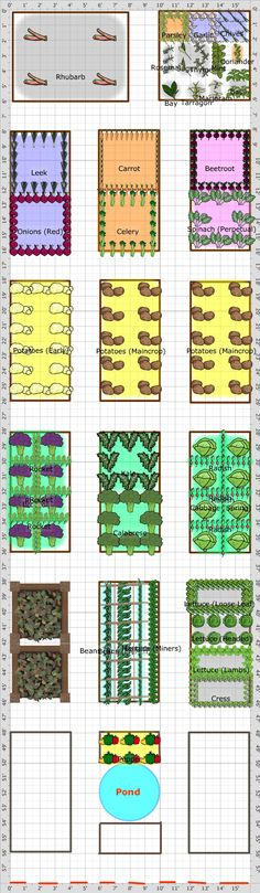 Garden Plan - 2014: Allotment