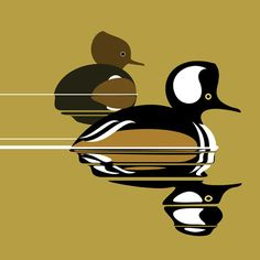 Hooded Merganser Duck Drawing, Scientific Drawing, Decoy Carving, Office Artwork, Cut Animals, Paludarium, Sketch Painting, Watercolor Bird, Diy Projects To Try