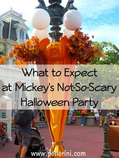 Two of our favorite times of the year to plan visits are for Mickey's Not So Scary Halloween Party and Mickey's Very Merry Christmas.  Since we've gone for the past 8 years, I've collected a few pointers and tips on what to expect when you go!