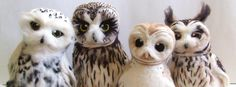 Owls Pinned by www.myowlbarn.com