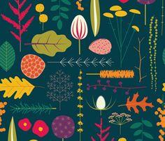 Botanical Specimens fabric by katerhees on Spoonflower - custom fabric